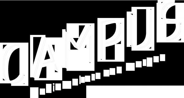 Groot logo schuin - wit transparant